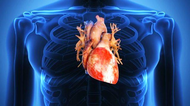 Disfunzione erettile allerta per il cuore